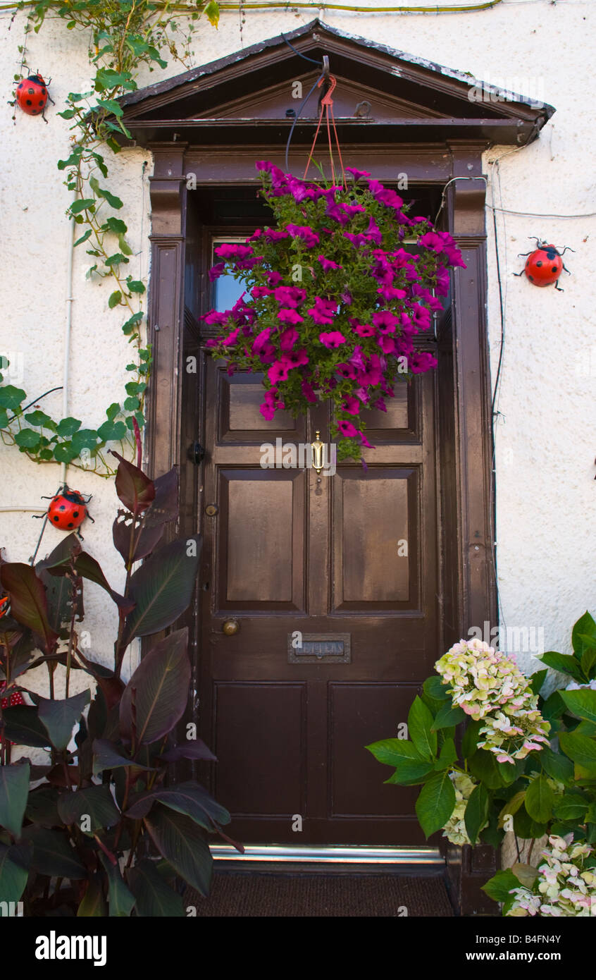 Brown Front Door Of House With Hanging Flower Basket And Ladybirds UK    Stock Image