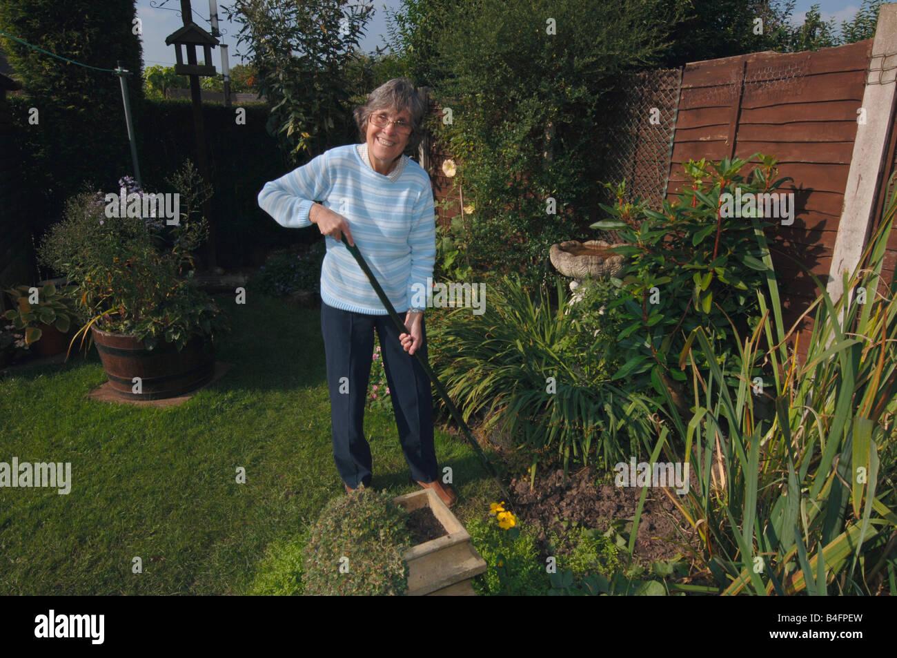 A Woman In Her Seventies Hoeing Her Garden - Stock Image