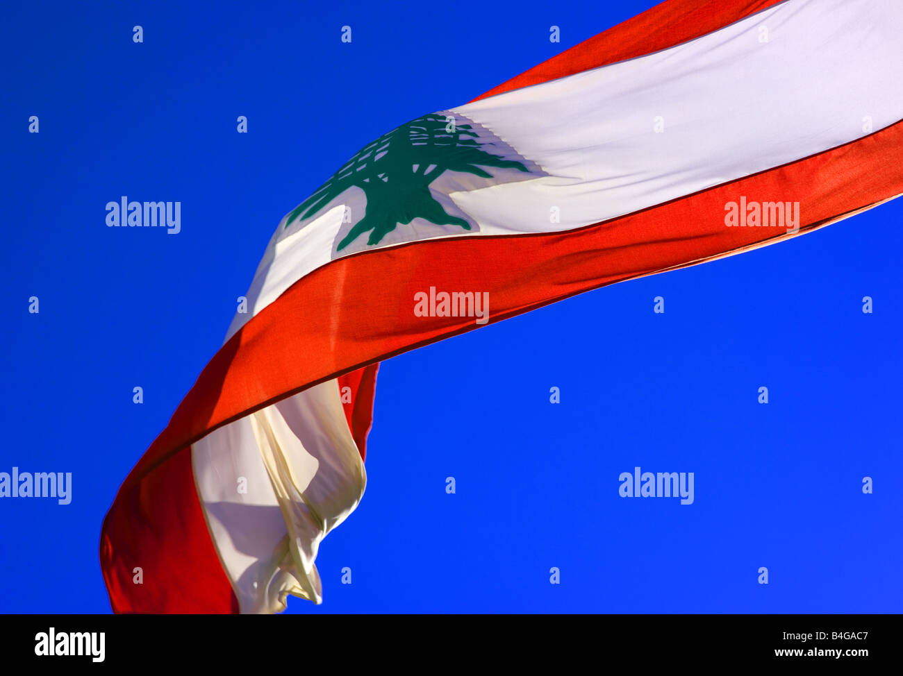 Lebanon's flag in the wind. - Stock Image