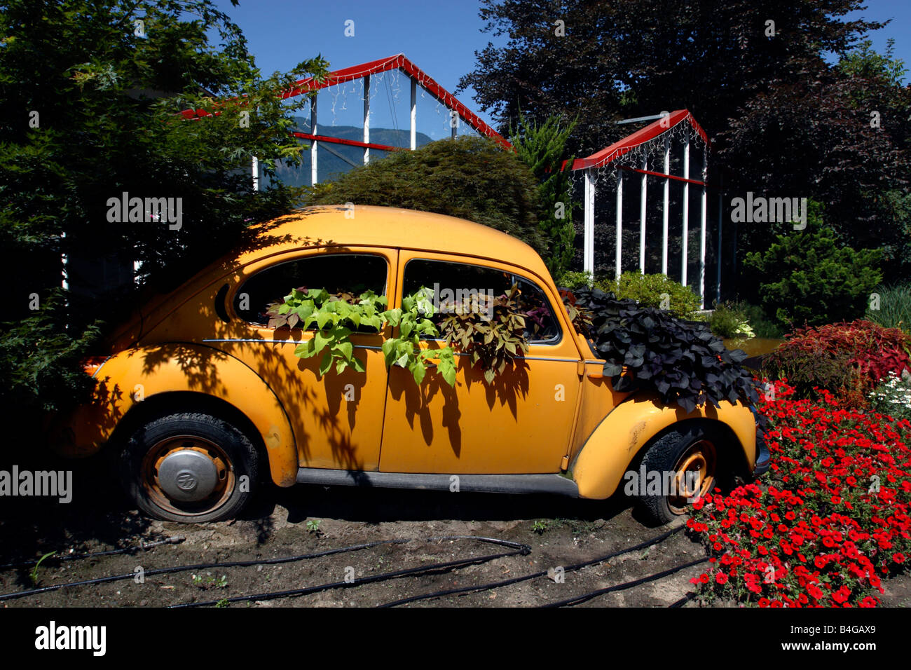 VW Beetle used to advertise a garden centre, Postal-Burgstall, Italy, Postal-Burgstall, Italy - Stock Image