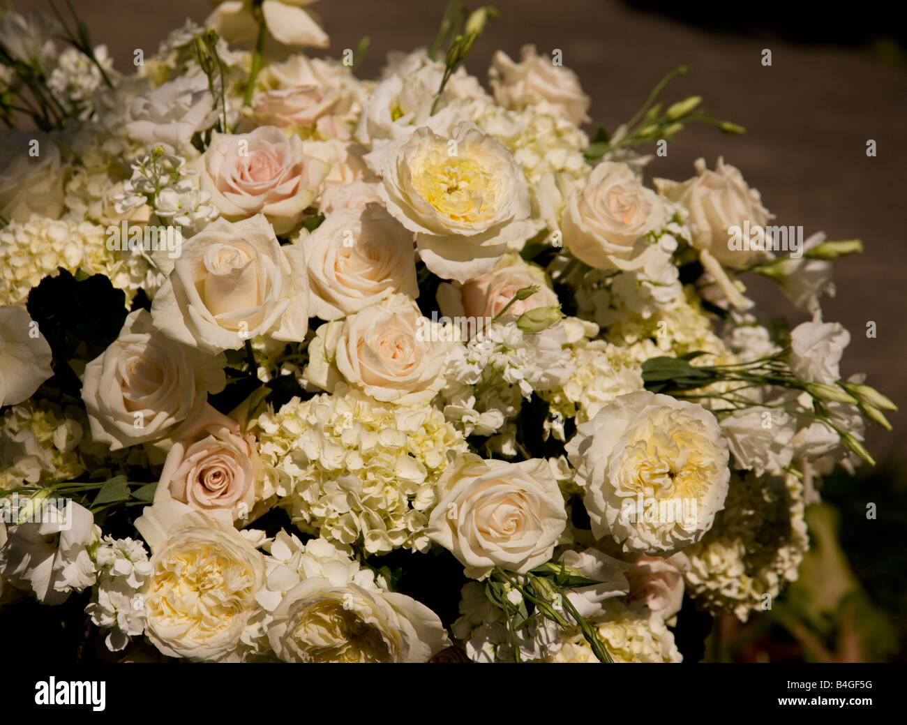 Light pink roses and white hydrangeas rest in a marble fount at Brookgreen Gardens in South Carolina, USA. - Stock Image