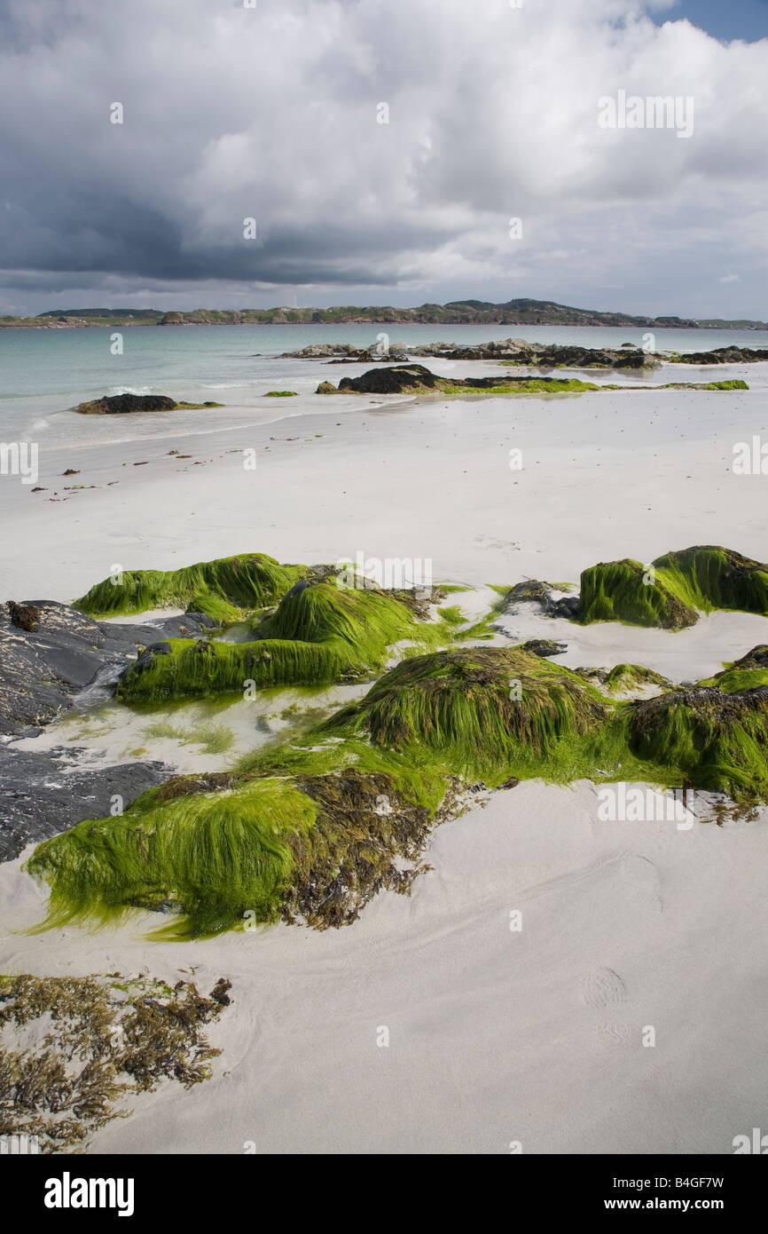 Beach Iona Scotland - Stock Image