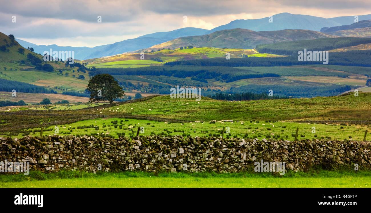 English Lake District, landscape, England, UK in autumn - Stock Image