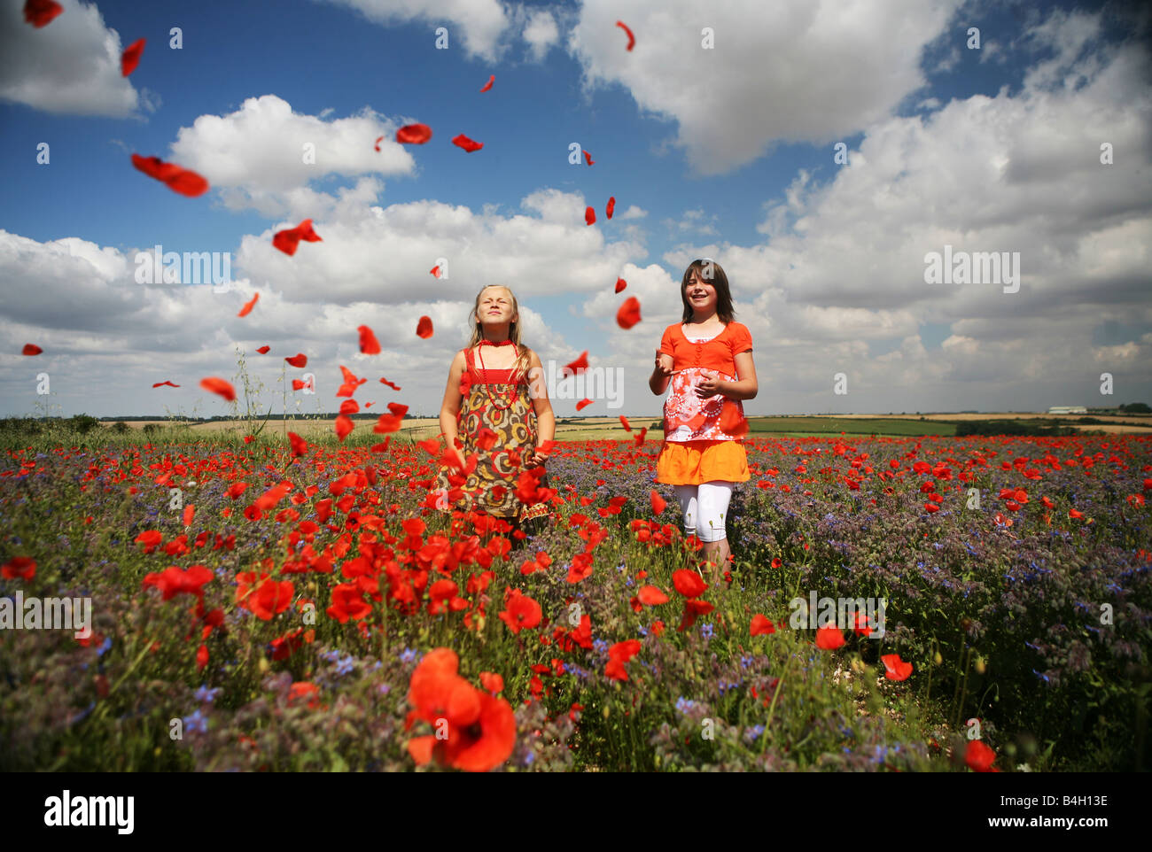 Poppy poppies field in Lincolnshire with children playing girls child kids remembrance day scene - Stock Image