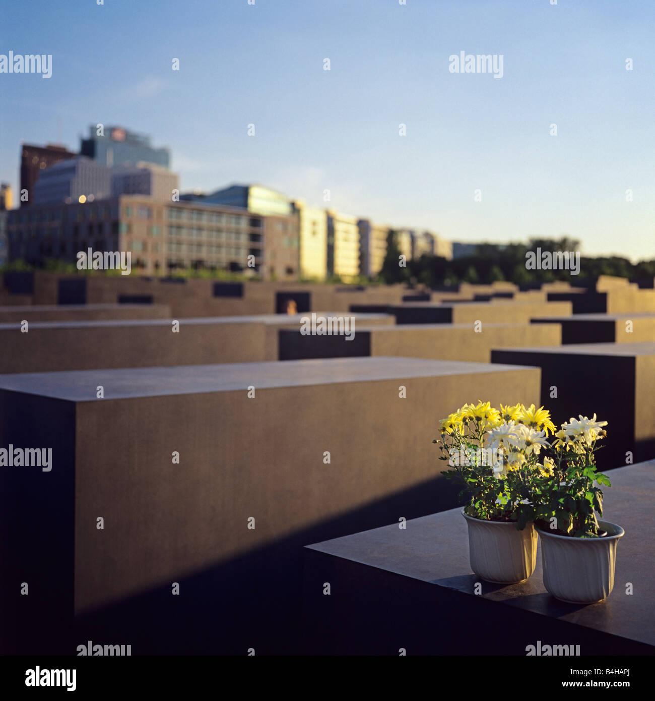 Flower pots on tombstones Holocaust-Memorial Berlin Germany & Flower pots on tombstones Holocaust-Memorial Berlin Germany Stock ...