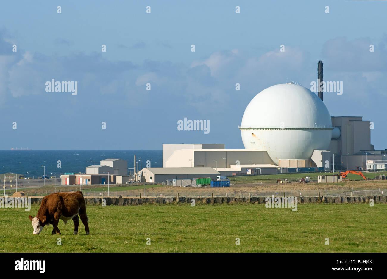 Dounreay Atomic Energy Plant Thurso Caithness Northern Scottish Highlands UK - Stock Image