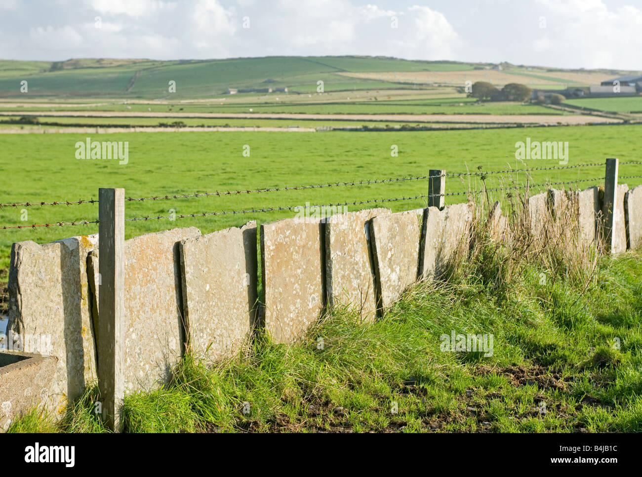 Caithness Flagstone used as a wall for retaining farm stock Northern Scottish Mainland Highlands UK - Stock Image