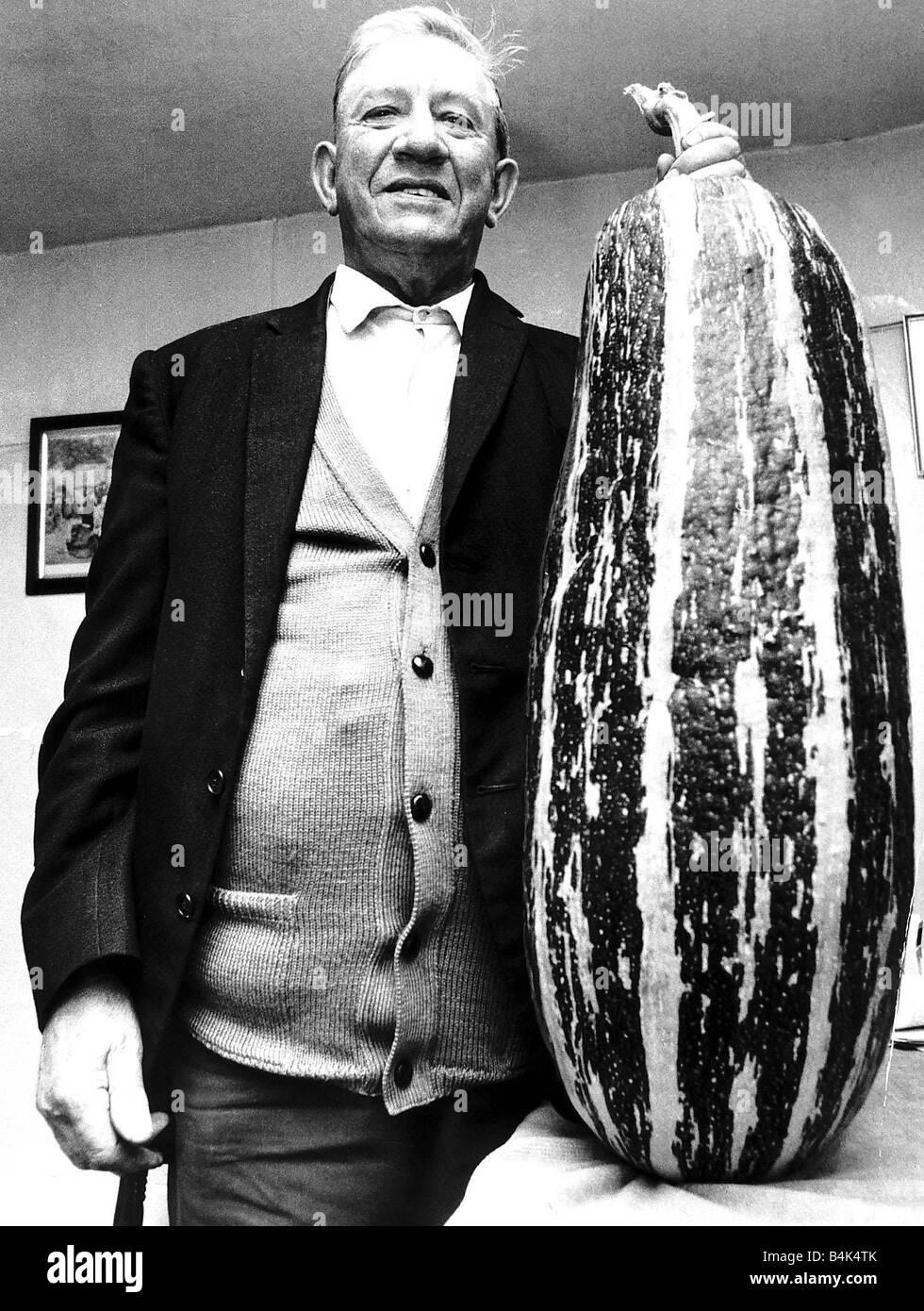 Giant marrow Vegetables marrow circa 1987 - Stock Image