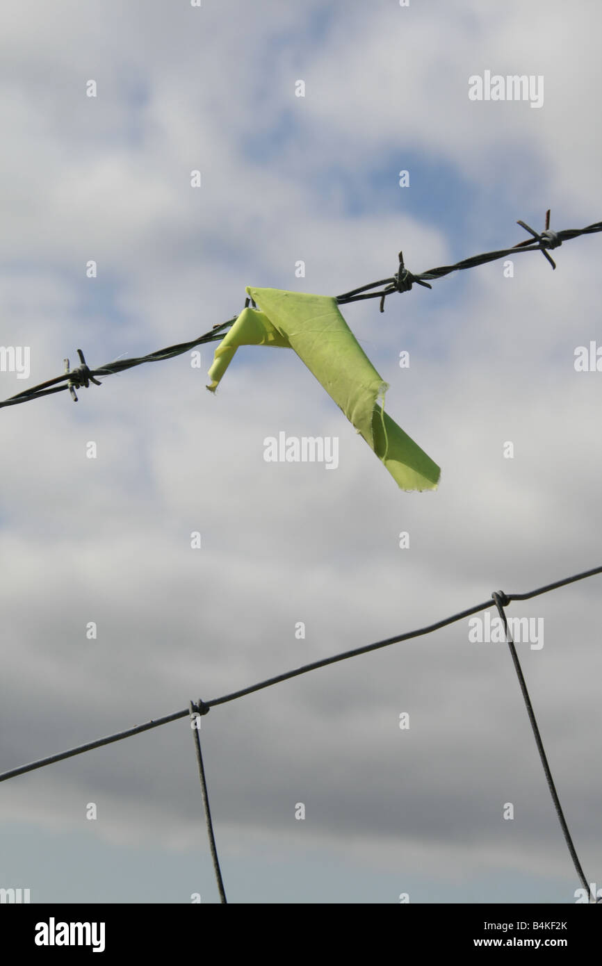 one piece of green fabric clothing stuck in barbed wire fence Stock ...