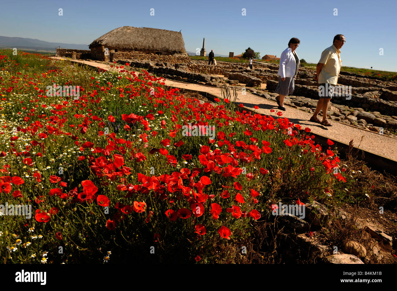 Roman ruins at Numancia north of Soria Spain - Stock Image
