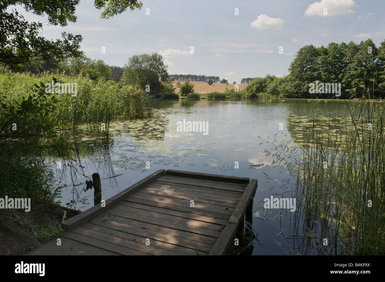 jetty over lake in staffordshire - Stock Image