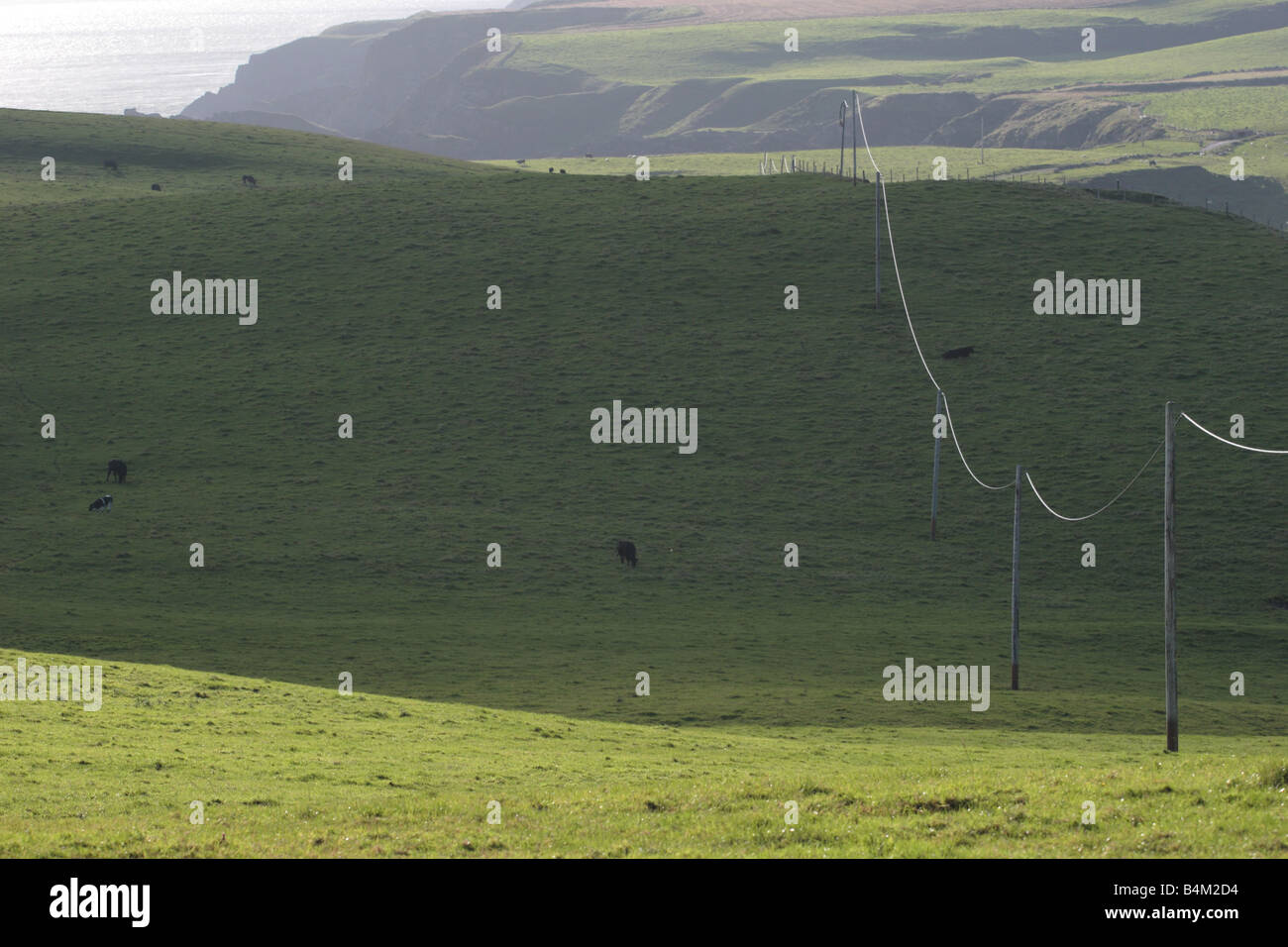 Sidelit power cable crossing pasture land in shadow at Mull of Galloway, Dumfries & Galloway. - Stock Image