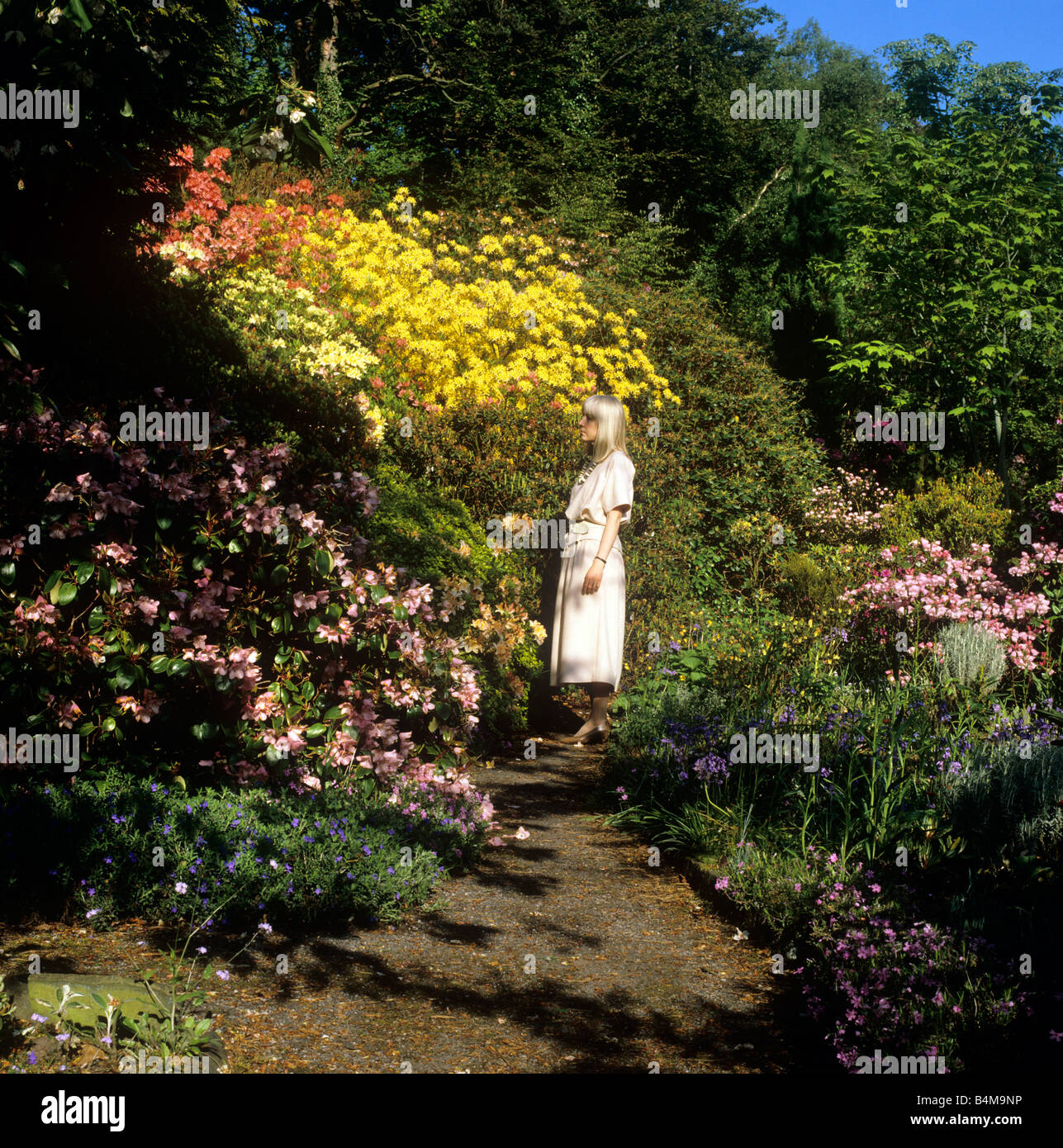 Cheshire Garden Spring Path Stock Photos & Cheshire Garden Spring ...