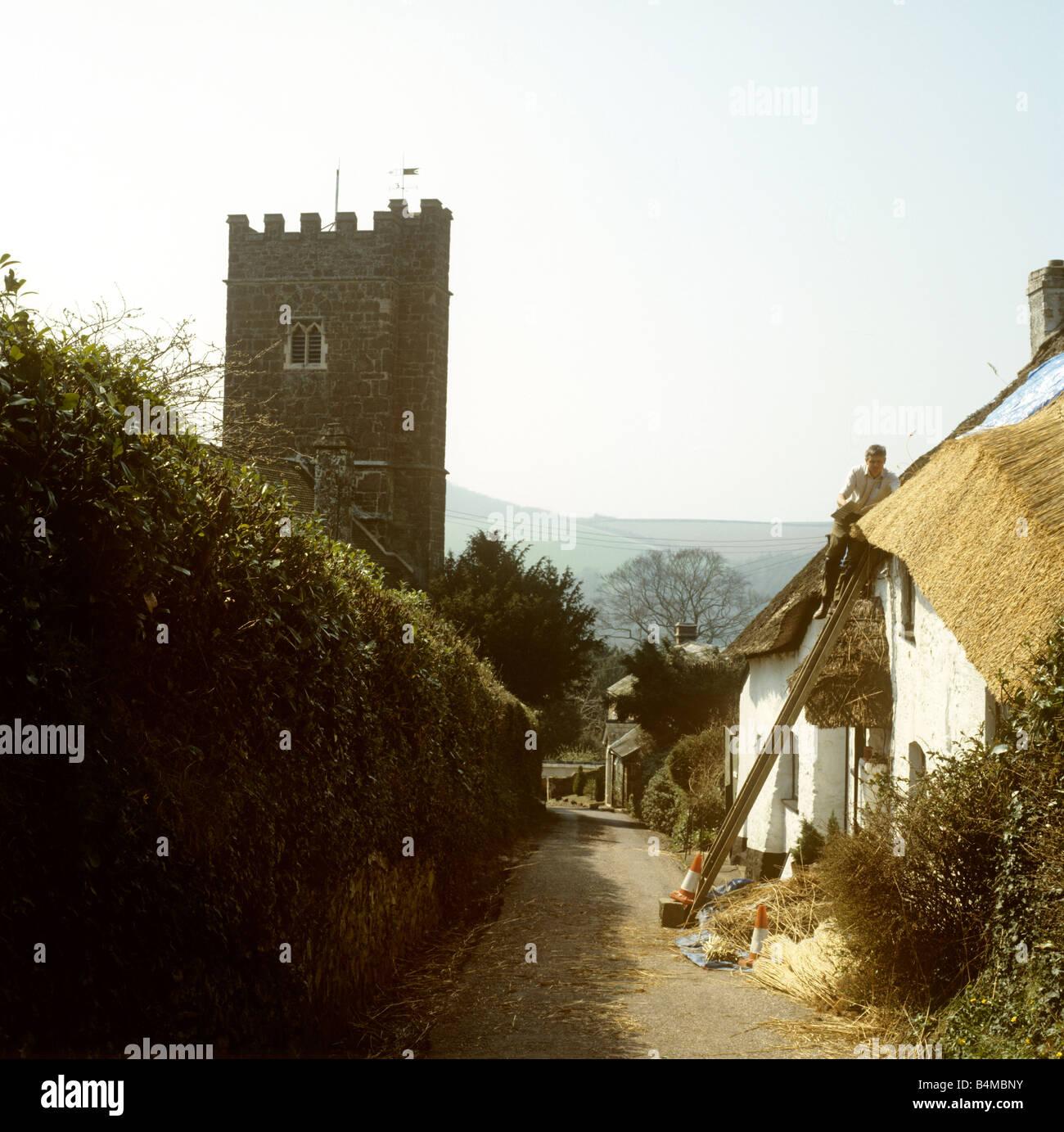 UK England Devon Bickleigh village traditional thatcher at work thatching cottage roof Stock Photo