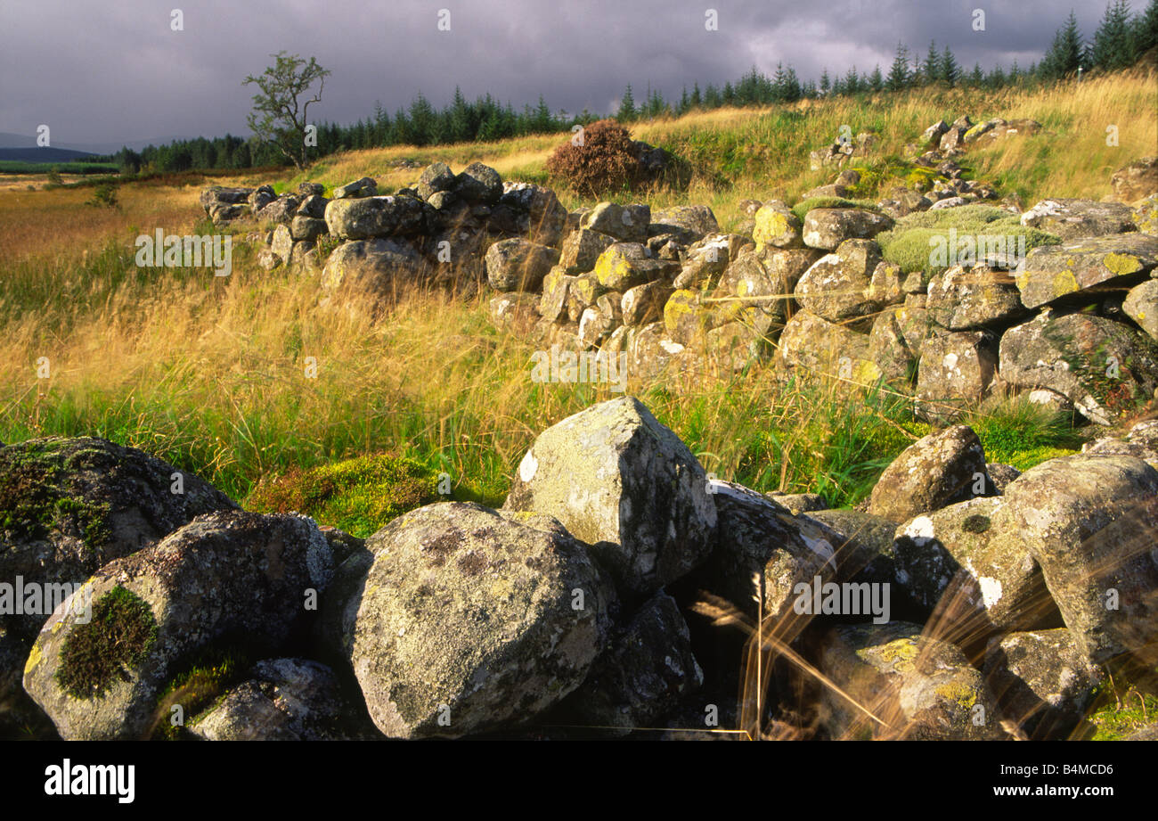 Polmaddy a classic Galloway settlement based on subsistence farming in the Galloway Scotland UK - Stock Image