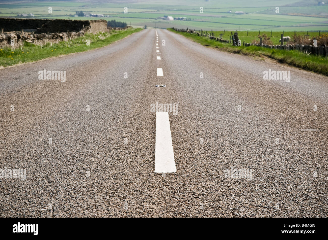 Highway A836 in passes through the green pasture lands of north east Caithness Near Dunnet Scotland - Stock Image