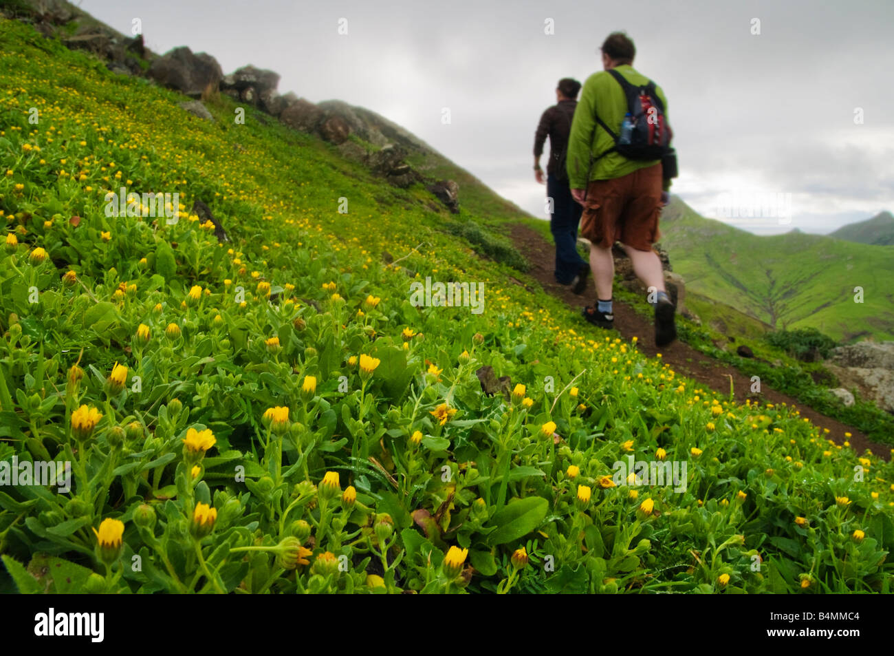 Walkers on the path to Terra Chã on Porto Santo the neighbouring island to Madeira - Stock Image