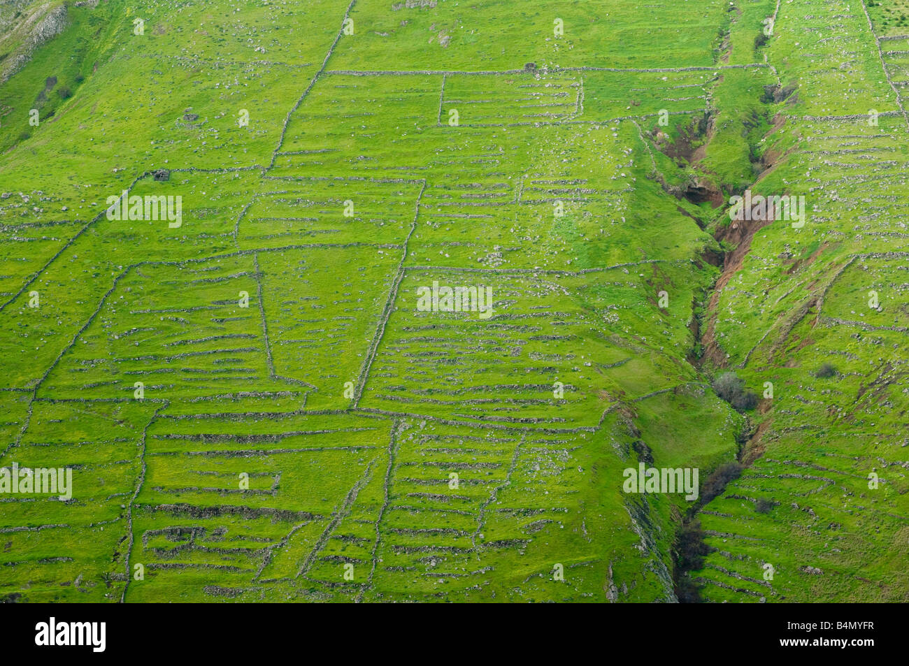 Abandoned cultivation terraces on Porto Santo the neighbouring island to Madeira - Stock Image