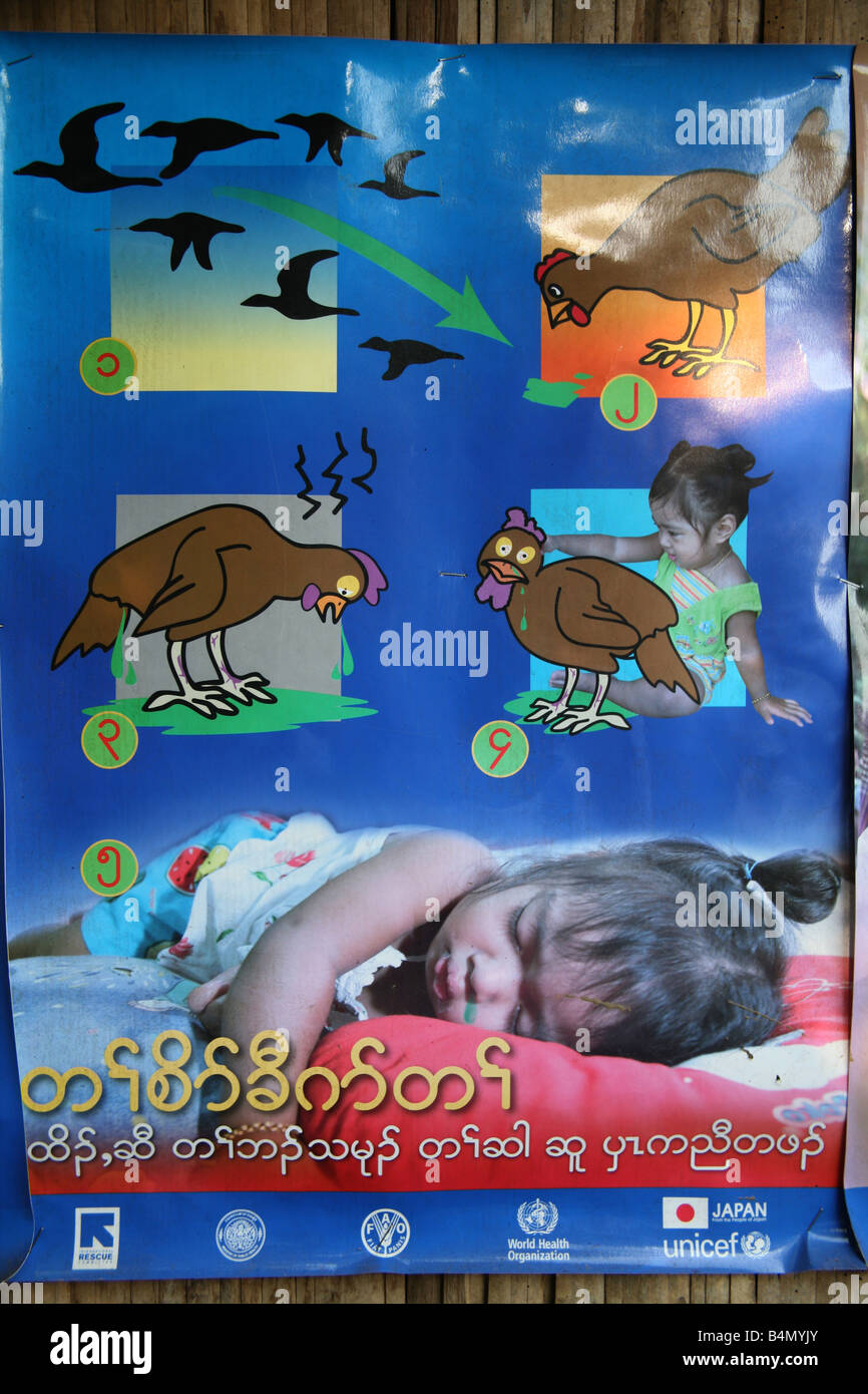 Poster On Public Health Issues Involving Bird Flu A Disease Infectious To Humans Around 130 000 Burmese Refugees Have Settled In Thailand Due Opression