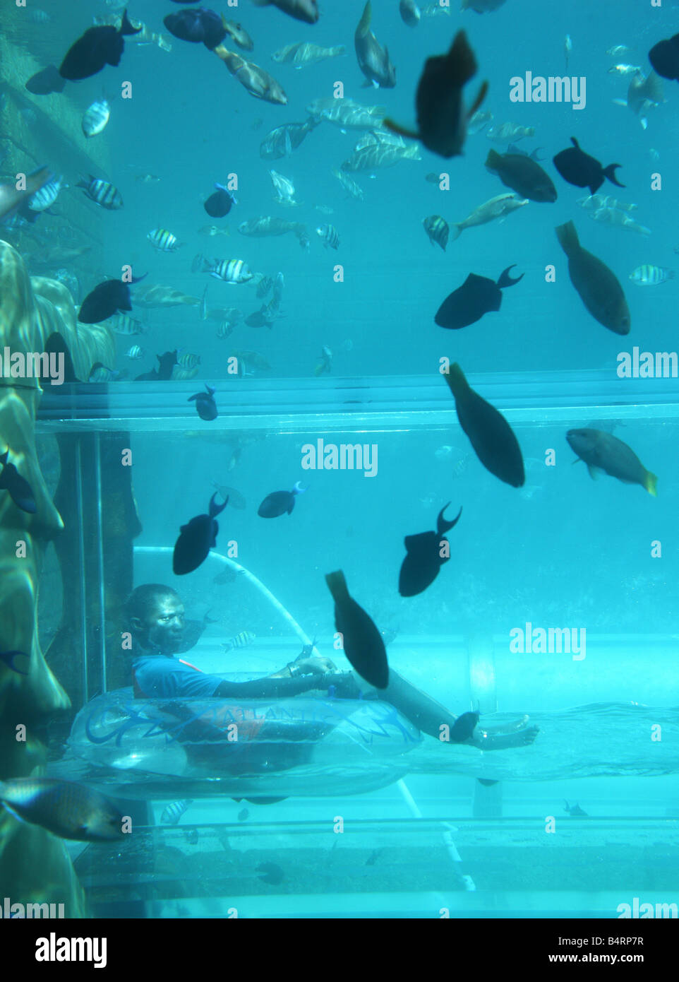 atlantis hotel the palm dubai united arab emirates water fun park aquaventure underwater water slide atlantis e40 underwater