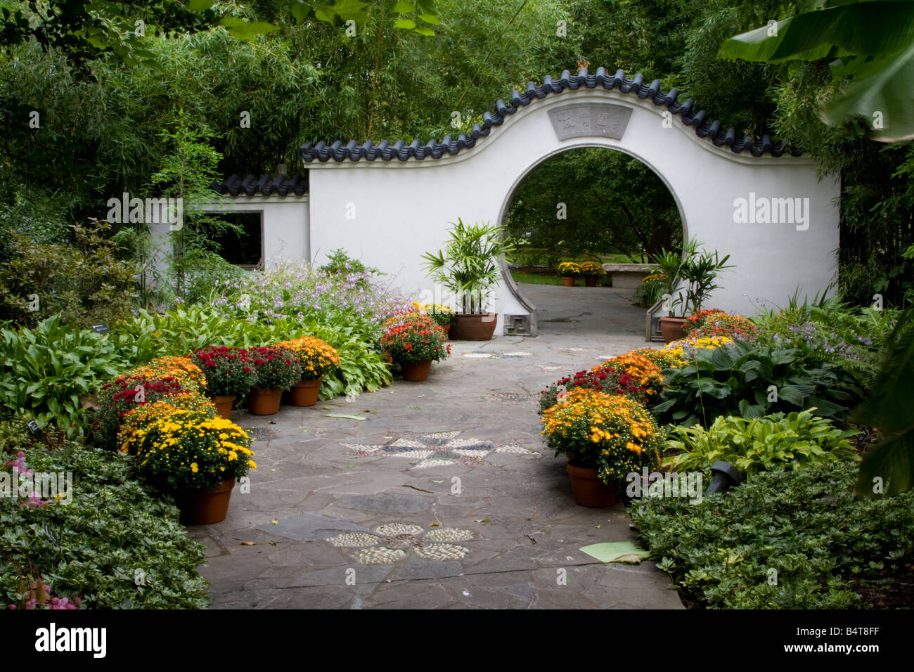 St. Louis, Missouri, USA. Chinese Garden, Missouri Botanical Garden,  Nanjing Friendship Garden With Moon Gate.