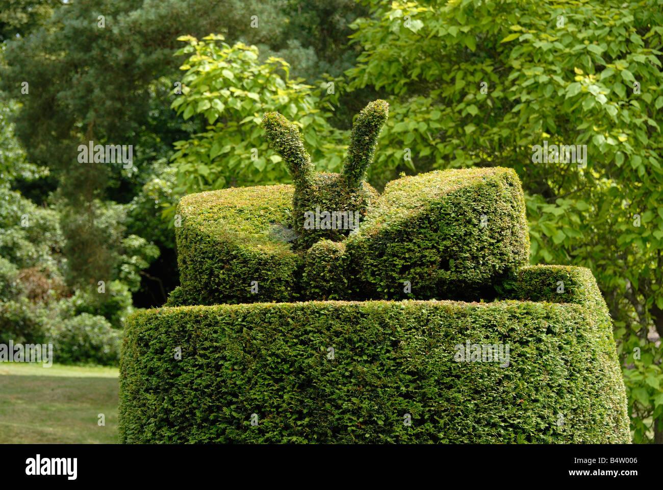 Evergreen Garden Design Ideas Arc Html on