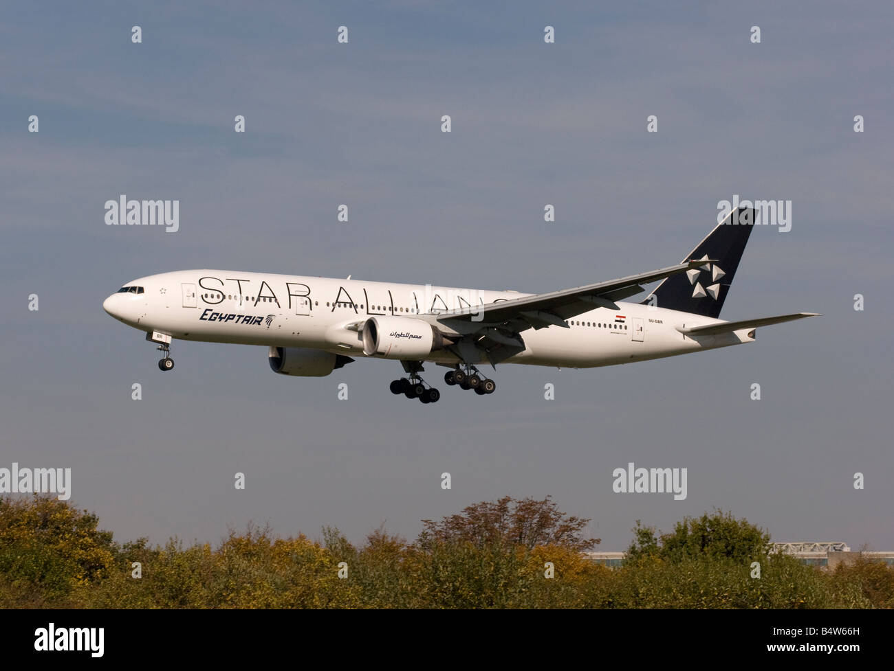 Egyptair Boeing 777 266ER in a Star Alliance livery landing at London Heathrow - Stock Image