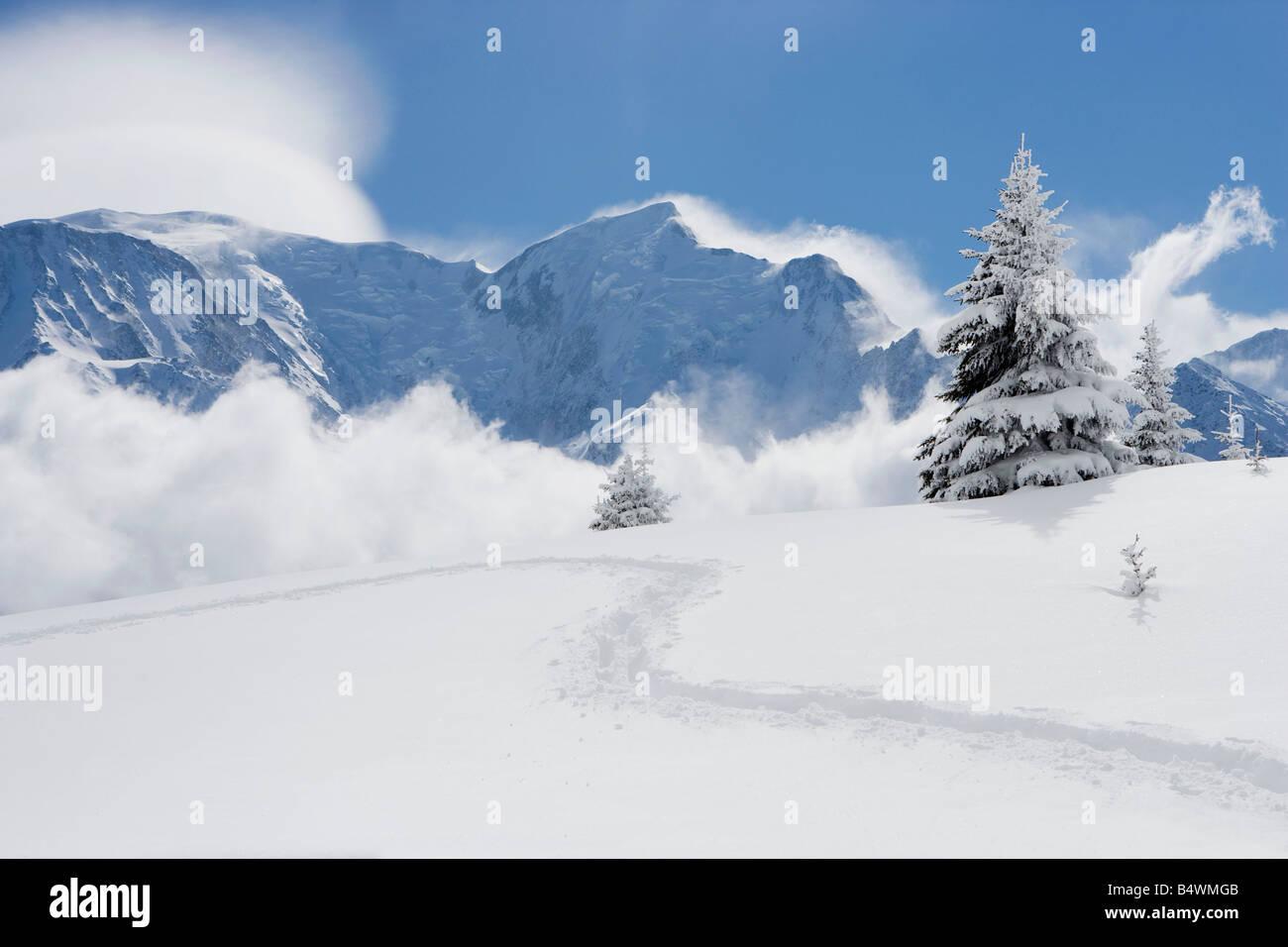 Footprints through fresh snow Stock Photo