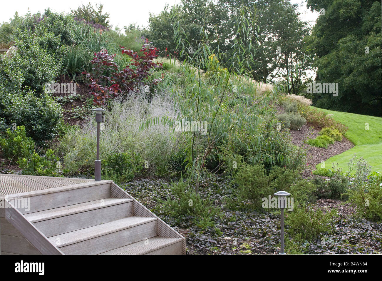 Green oak garden steps with garden lights. Herbaceous border by lawned area. - Stock Image