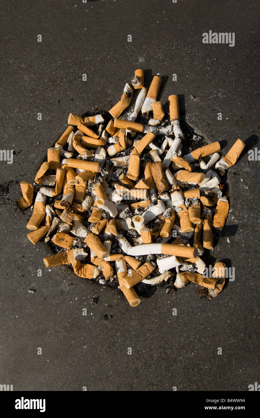 Cigarette ends in bin England UK United Kingdom GB Great Britain British Isles Europe EU - Stock Image