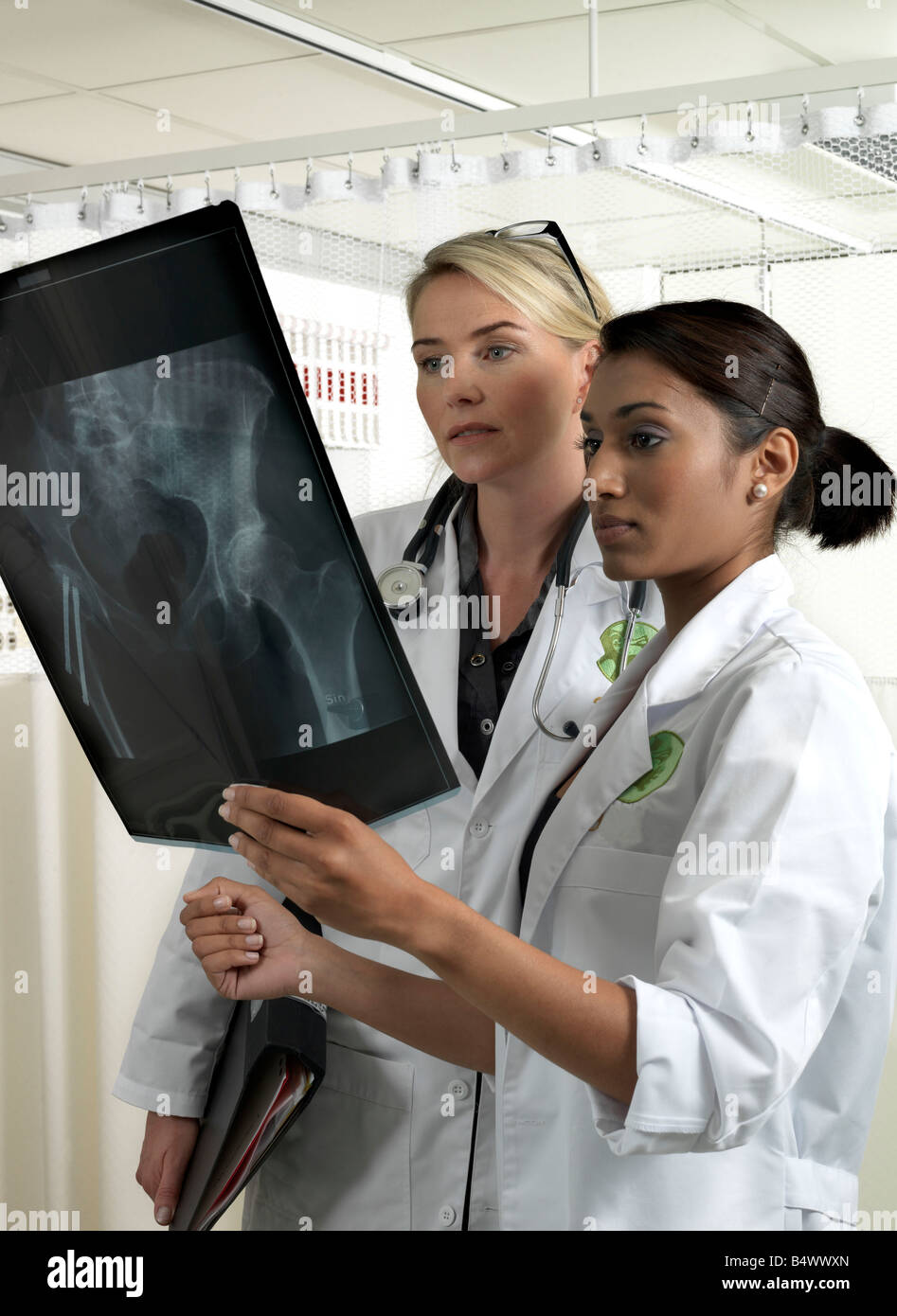 Two doctors with x-ray - Stock Image