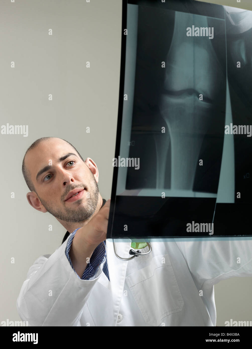 Doctor with x-ray - Stock Image