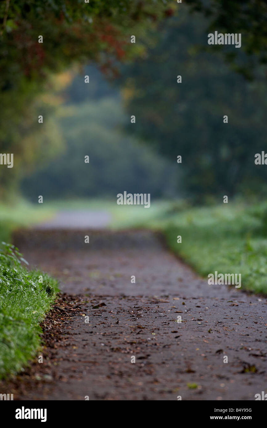 empty parkland footpath in lagan valley regional park autumn morning in mist county down northern ireland uk - Stock Image