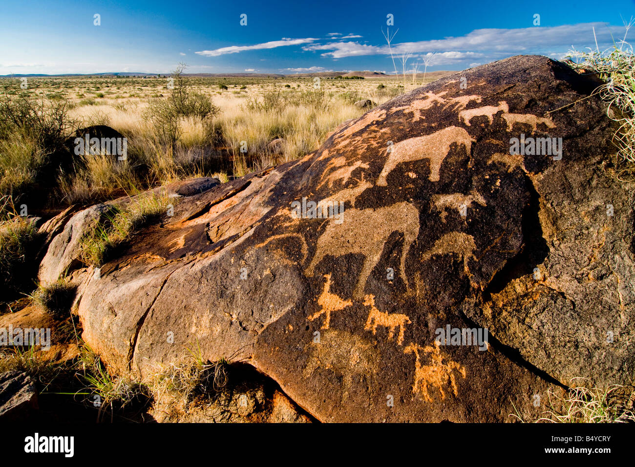 Bushmen, petroglyphs, Kenhardt, Northern Cape, South Africa - Stock Image