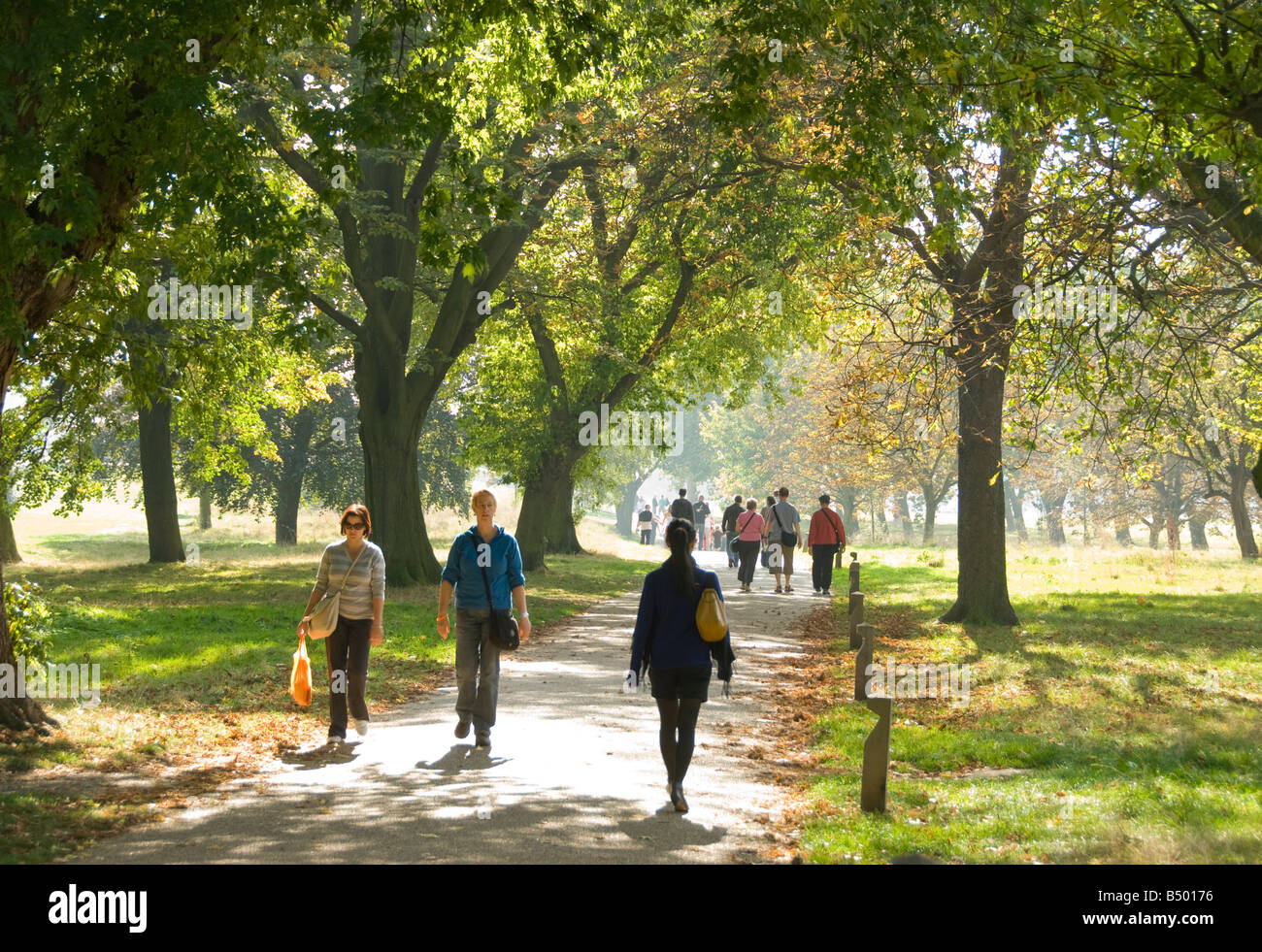 People Walking Through Regent S Park In London Stock Photo 20284634 Alamy