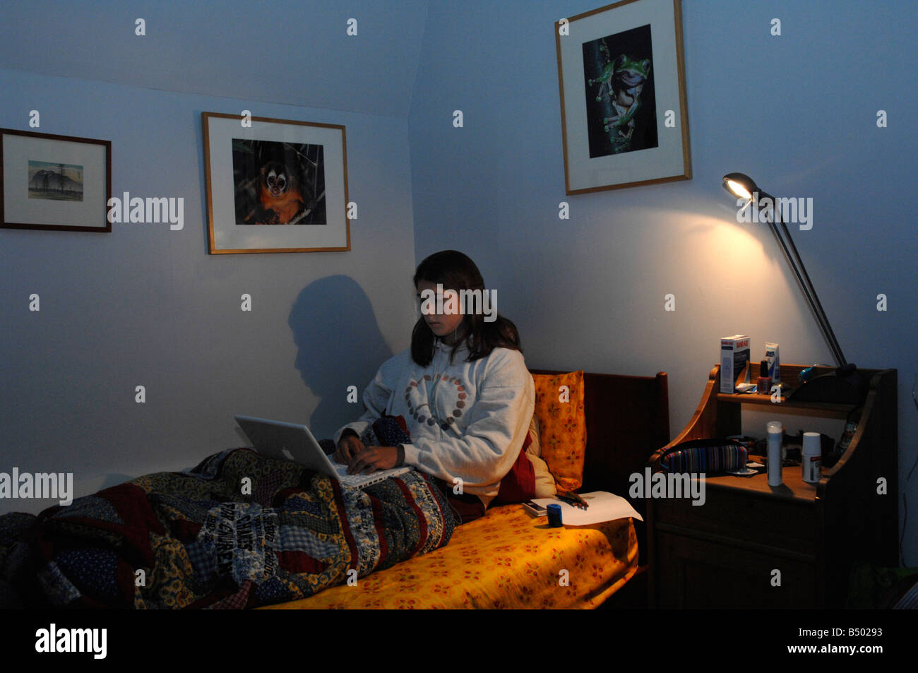 16 Year Old Girl Surfs The Web In Her Bedroom Stock Photo Alamy