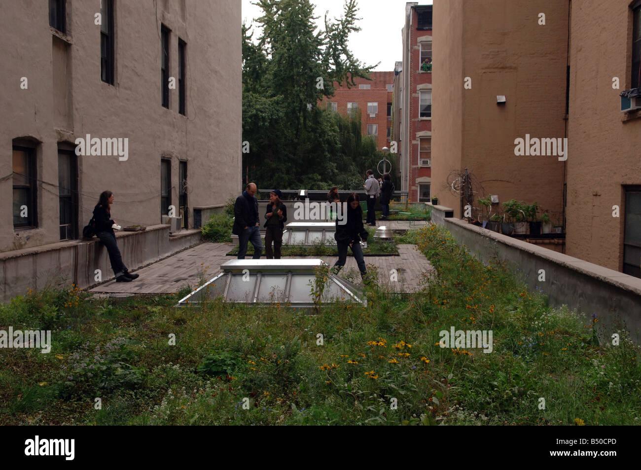 Rooftop Garden New York Stock Photos Rooftop Garden New York Stock