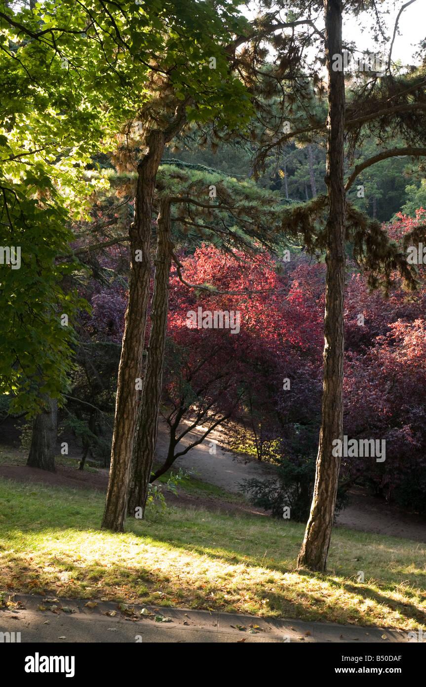 Parc des Buttes Chaumont, Paris, France - Stock Image