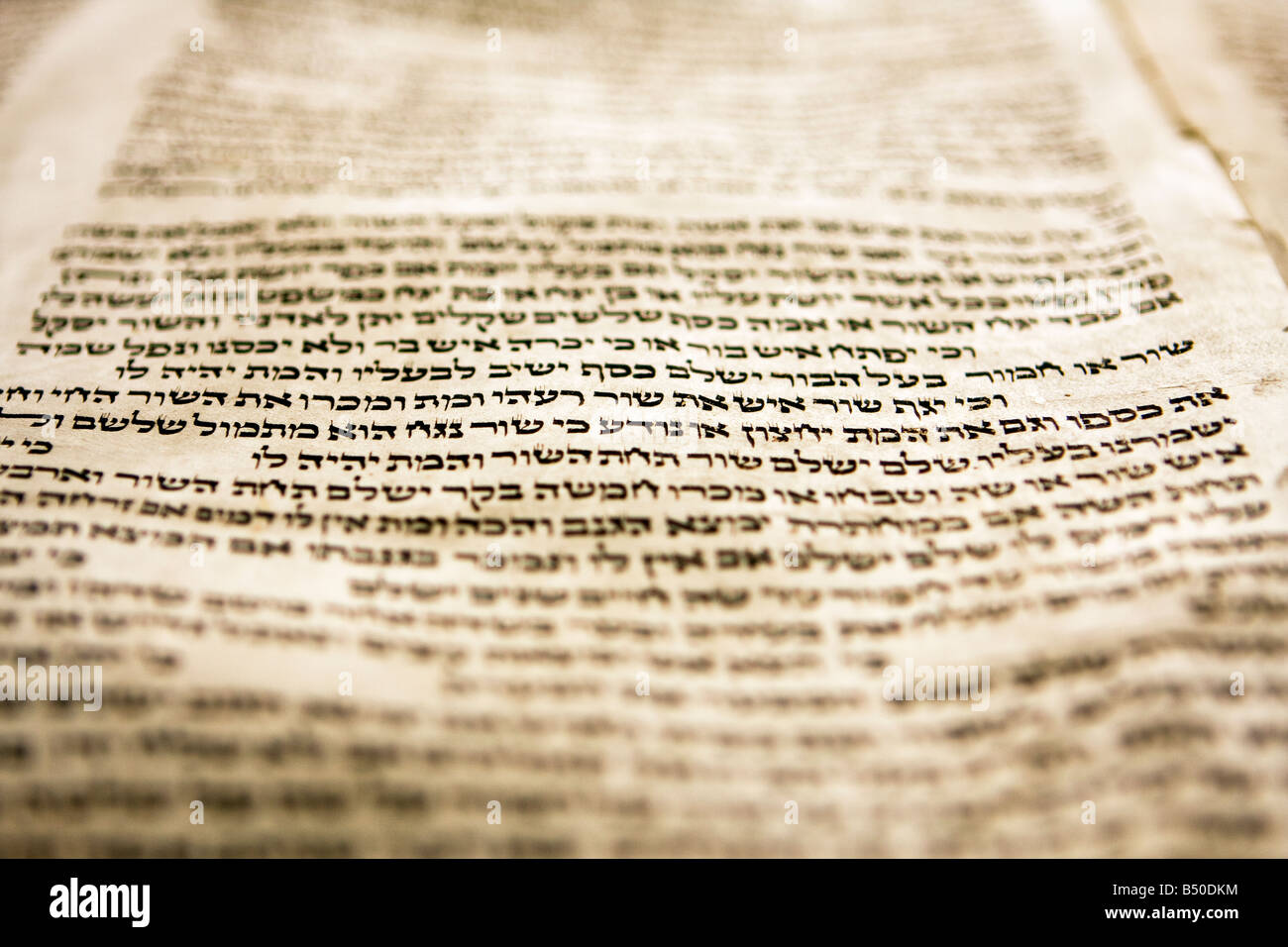 One or two lines of Hebrew text in a torah scroll - Stock Image