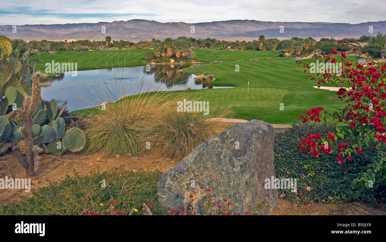 Palm Springs CA Desert Willows public Golf course beautiful lovely picturesque Western US United States in Palm - Stock Image