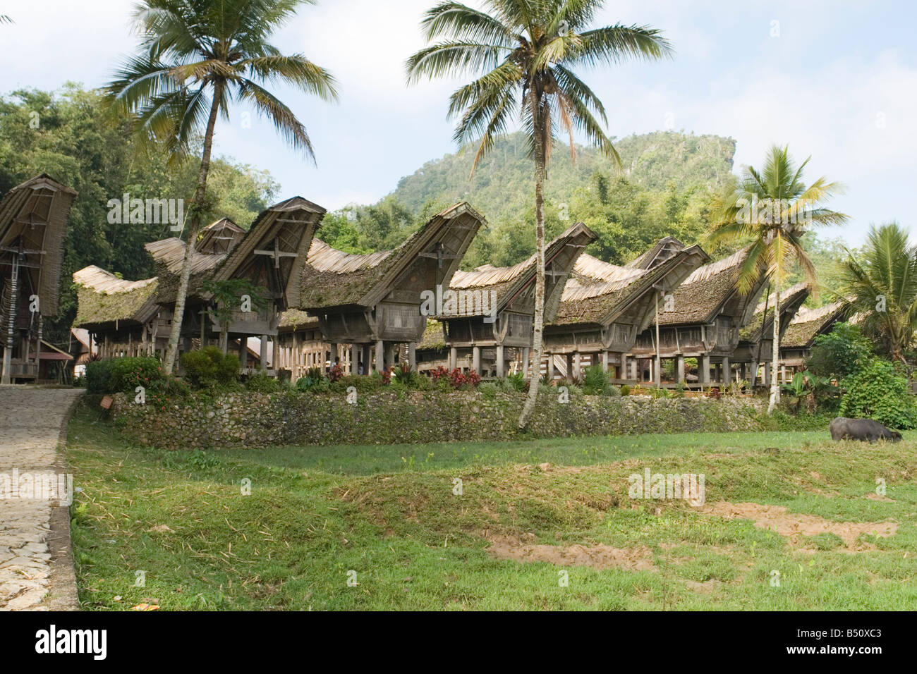 Houses and rice barns of the Ke'te Kesu village (Sulawesi - Indonesia). Maisons et greniers à riz du pays - Stock Image