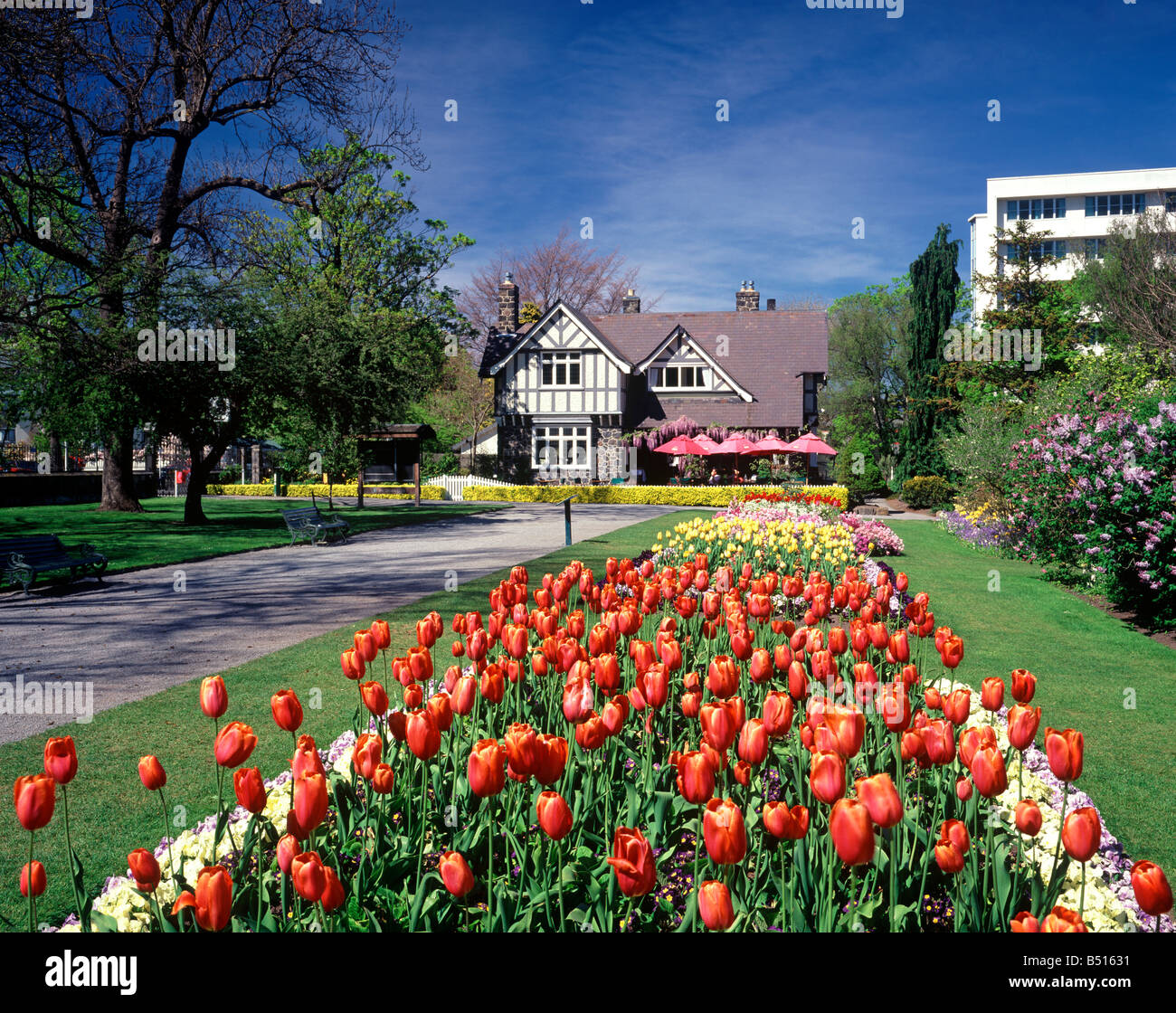 A Scenic Photo In Christchurch New Zealand Of The Spring Flowers In