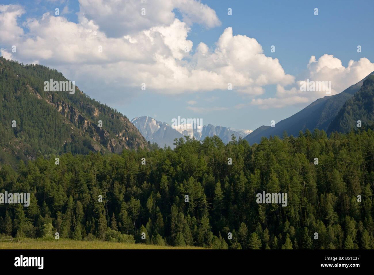 Valley of Kucherla river, Altai mountains, Siberia, Russia - Stock Image
