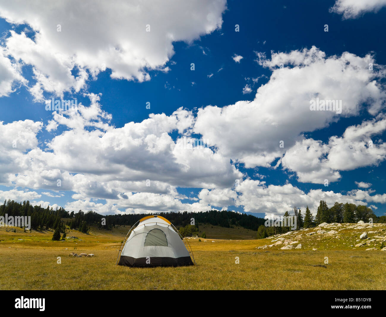 Camping tent in the wildness - Stock Image