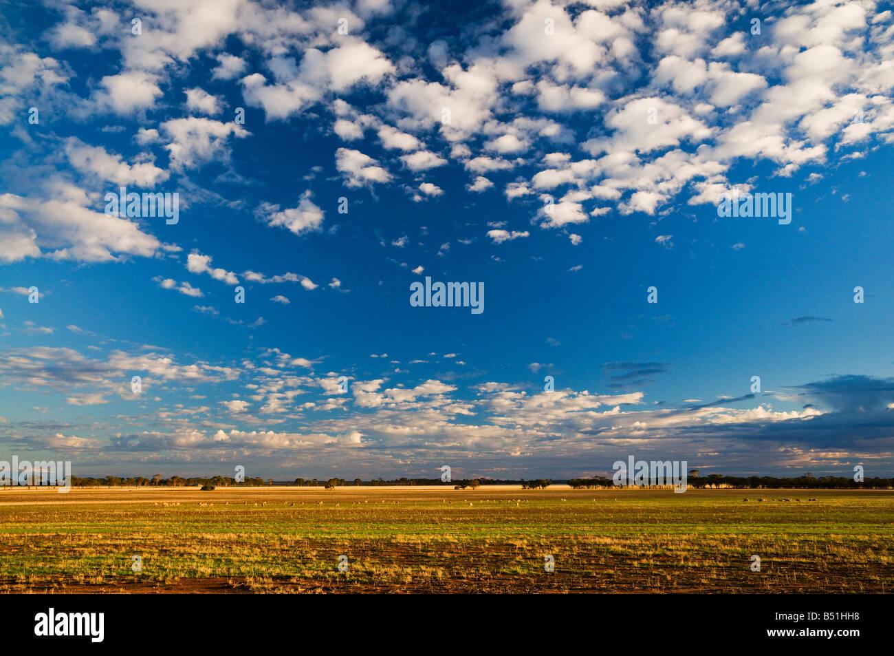 Corrigin, Western Australia, Australia Stock Photo