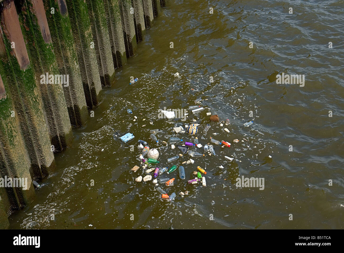 trash rubbish and scum on the river Thames in Blackwall London UK - Stock Image