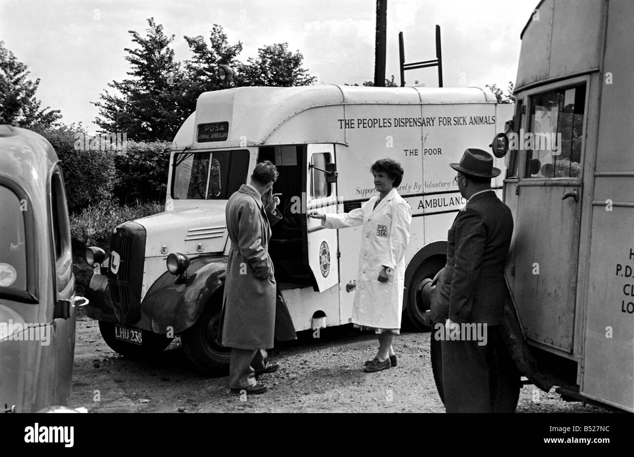 The People's dispensary for sick animals - PDSA Centre. July 1952 C3468 - Stock Image