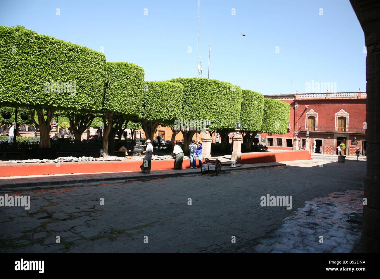El Jardin in San Miguel de Allende Mexico Manicured trees El Centro Village Center Street life Colonial town Colonialism - Stock Image