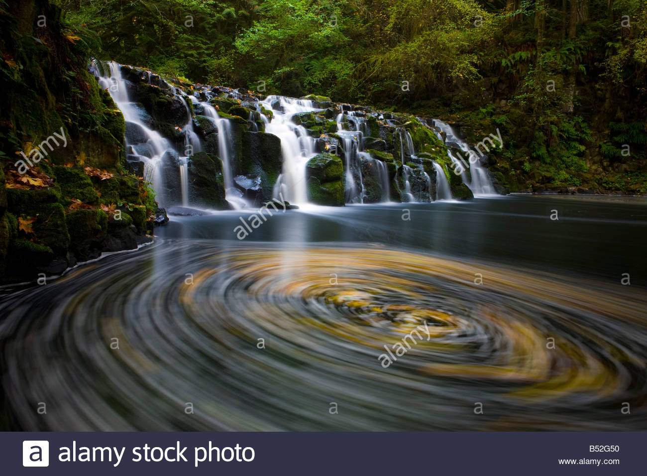 Fallen leaves seem to be trapped in a vortex beneath Upper Beaver Creek Falls in Oregon. - Stock Image