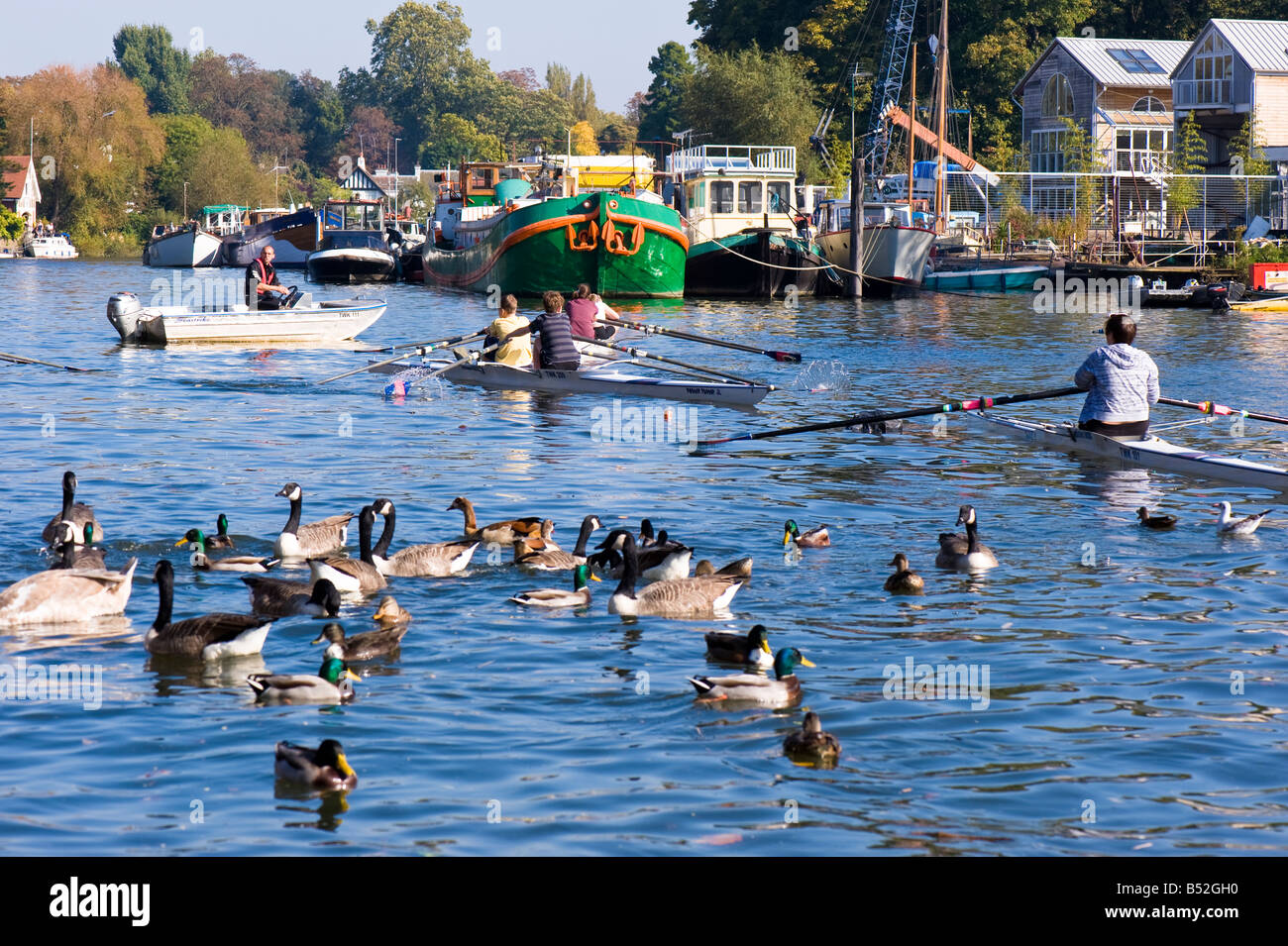 People relaxing on Thames River Twickenham TW10 London United Kingdom - Stock Image